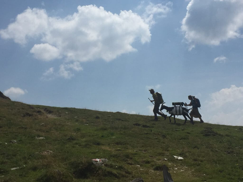 Kleinkirchheim - karinthie - Vaders op Reis - wandelen