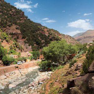 Detox Excursie Berbers