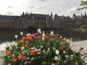 De Hofvijfer in Den Haag