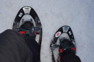 Sneeuwschoenwanden in Zwitserland